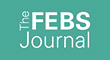 The FEBS Journal Logo