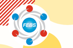The FEBS  Excellence Award