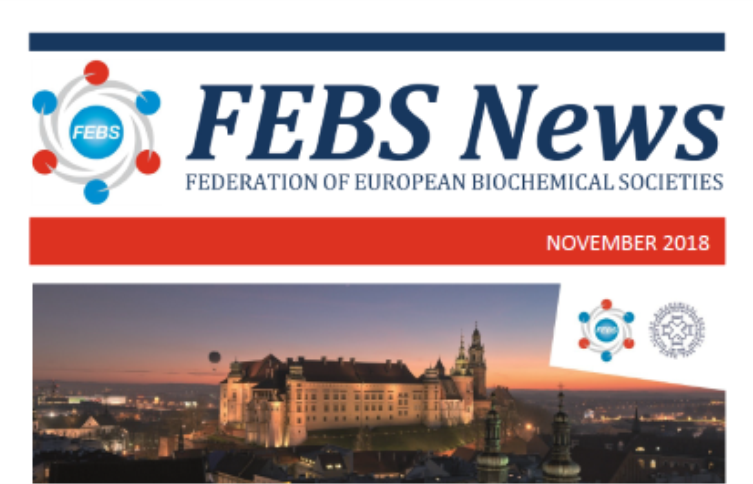 The November 2018 issue of FEBS News is out