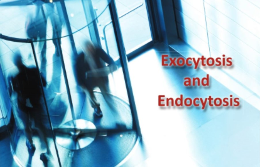 A FEBS Letters Special Issue on Exocytosis and Endocytosis