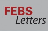 Call for applications for Editor-in-Chief position at FEBS Letters