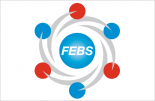 New FEBS Committee and Working Group members starting 2021
