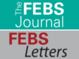 The 2018 FEBS Press awards