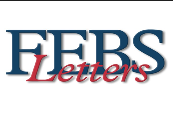 FEBS Letters Special Issues: order and disorder