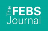 The FEBS Journal Richard Perham Prize 2020