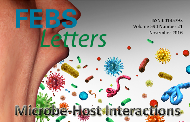 The latest Special Issues from FEBS Letters